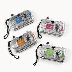Camera View Finder (1 Dozen) - Bulk