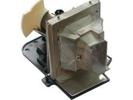 SIM2 D10 LAMP & HOUSING プロジェクターTVランプ電球の交換用   B07MXLGMWP