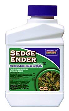 Sedge Ender Concentrate by Bonide