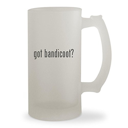 Crash Bandicoot Mind Over Mutant Ds Costumes (got bandicoot? - 16oz Sturdy Glass Frosted Beer Stein)
