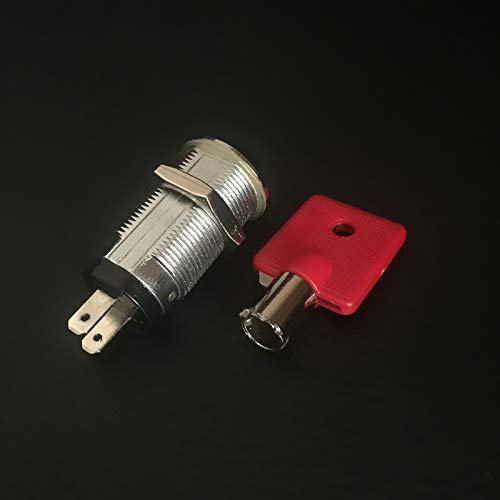 (RayLock tubular key switch lock with 2 flat plug for gaming machines)