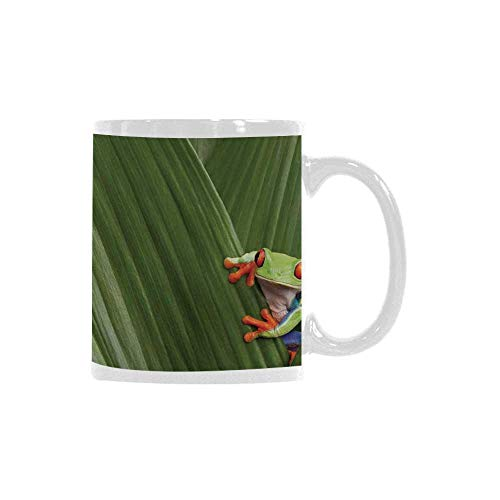 Animal Decor Trend Mug,Red Eyed Tree Frog Hiding in Exotic Macro Leaf in Costa Rica Rainforest Tropical Nature Photo for Office Travel,3