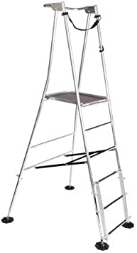 Secuaz Senior Hi-peldaños de aluminio escalera de jardín - diseño de - BS EN131 estándares - ToolZone profesional Rebecca hose: Amazon.es: Bricolaje y herramientas