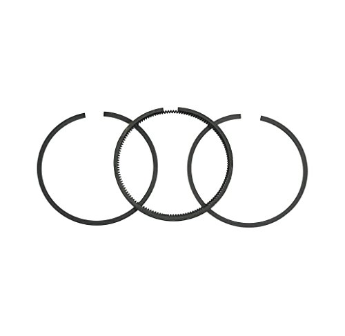 Briggs & Stratton 499996 Standard Piston Ring Set ()