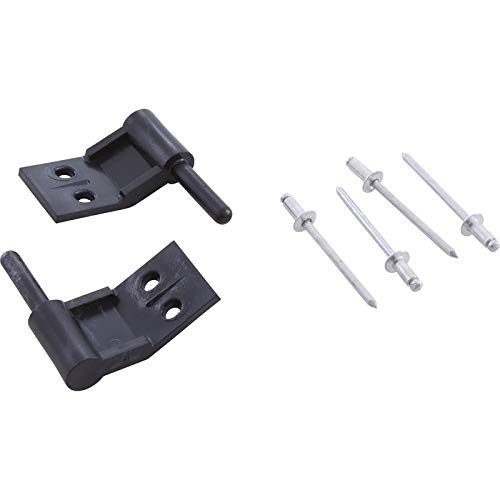 - Pentair Compool Replacement Parts HINGE PINS FOR INTERIOR FACEPLATE, SET OF 2 LXPIN