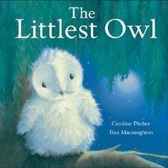 The Littlest Owl by Pitcher, Caroline (6/1/2008) pdf