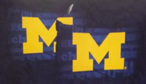Michigan Wolverines NCAA 2 Piece Pillow Case Set