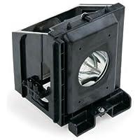 BP96-00826A Samsung HL-P6163W TV Lamp