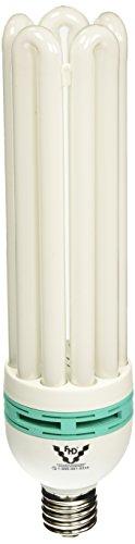 SunBlaster CFL Self ballasted Propagation lamp, 6400K Light Spectrum, 125 Watt, Use Mogual Size Light Socket