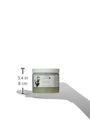 100% Pure: All Natural and Organic, Body Scrub - Eucalyptus, 16 oz