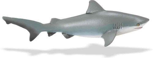 Toob Safari Sharks Ltd (Safari Ltd  Wild Sea Life Bull Shark)