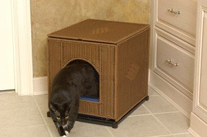 Decorative Litter Box Enclosure Color: Dark Brown, Size: Jumbo (20