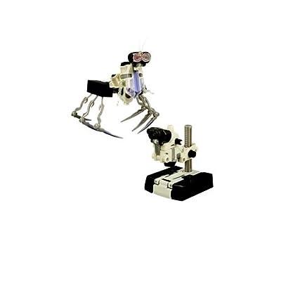 Transformers Revenge Of The Fallen Scout Class Wave 4 Scalpel Action Figure