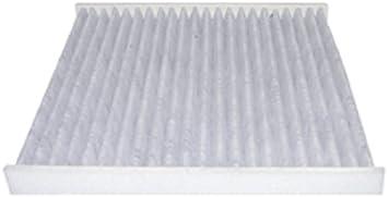 Cabin Air Filter Hastings AFC1310