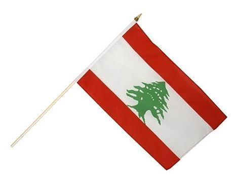 Digni drapeau Liban 30 x 45 cm