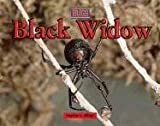 Black Widow, Heather Miller, 0737717653