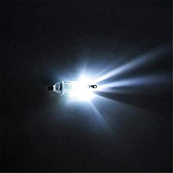 FidgetGear Fishing Light Lure Light Fish Underwater Flashing m8ynwOv0N