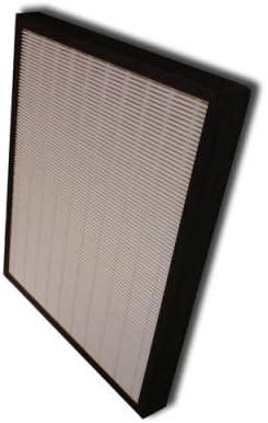 Heaven Fresh - Filtro HEPA de carbón para NaturoPure y Intelli-Pro ...