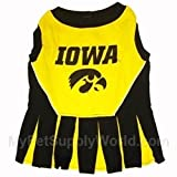 Iowa Hawkeye Cheer Leading XS