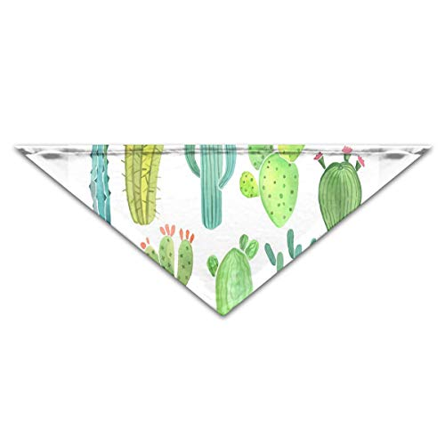 HJudge Dog Bandana Watercolor Cactus and Succulent Funny Dog Scarf Personalized Pet Bibs ()