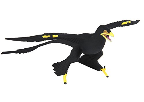Safari Ltd. Microraptor Realistic Hand Painted Toy Figurine Model Quality Construction from Phthalate, Lead and BPA Free Materials for Ages 3 and Up