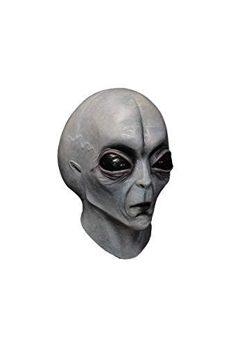 Area 51 Alien Adult Grey Mask for Halloween ()