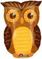 Owl party mylar balloon 18 inch (MULTI, 1) by Anagram (Owl Party Balloons)
