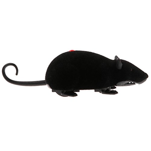 Homyl Remote Control Electronic Rat Mouse for Cat Dog Playing Chews Funny Toy Black