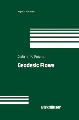 Geodesic Flows (Progress in Mathematics)