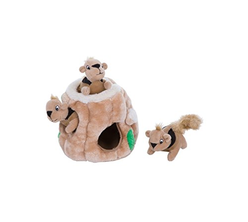 - Kyjen Plush Puppies Hide a Squirrel Dog Toy