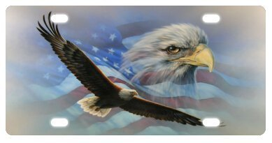 - zaeshe3536658 Bald Eagle With American Flag Usa Flag Novelty License Plate Decorative Front Plate 6 X 12 inches.