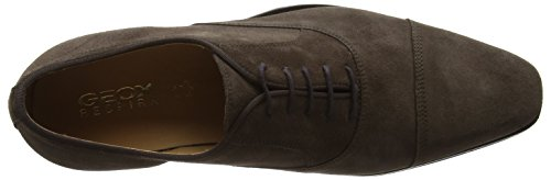 Uomo Geox e Life Marrone Oxford Scarpe Stringate New Chocolate U wFS7wqCa