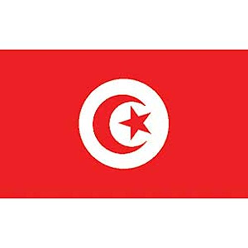 Buy findingking tunisia flag on a stick 12\