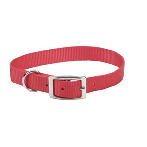 Coastal Pet 00301 B RED12 Nylon Dog Collar, 3 8 by 12-Inch