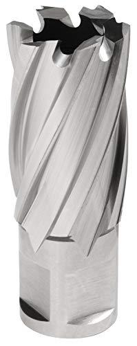 Hougen 12128 7/8 Inch Diameter x 1 Inch Depth of Cut 12,000 Series High Speed Steel Annular Cutter 3/4 Inch Weldon Shank for Magnetic Drills