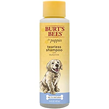 Pet Shampoos : Amazon.com: Burt's Bees for Dogs Natural