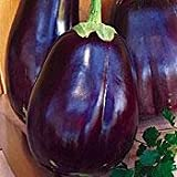 Imperial Black Beauty Eggplant 50 Seeds - Heirloom