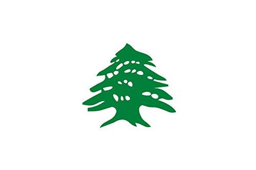 (DIPLOMAT-FLAGS Cedar | Lebanon After The Fall of The Ottoman Empire Flag | Landscape Flag | 0.06m² | 0.65sqft | 20x30cm | 8x12in Car Flag)