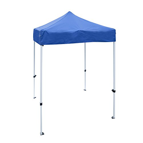 Blue Gazebo (ALEKO GZF5X5BL Foot Gazebo Tent 420D Oxford Canopy Party Tent, Blue)
