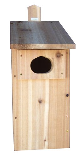 Stovall 5H Duck Box (Wood Duck Nest)