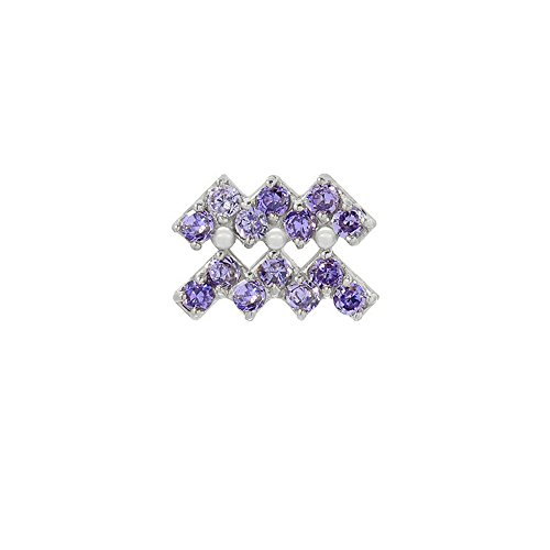 14k White Gold Amethyst Birthstone Accented Aquarius Zodiac Single Earring (Zodiac 14k Earrings)