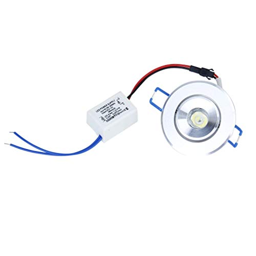 1W LED Lamp Fits White Lamp + Driver Warm White