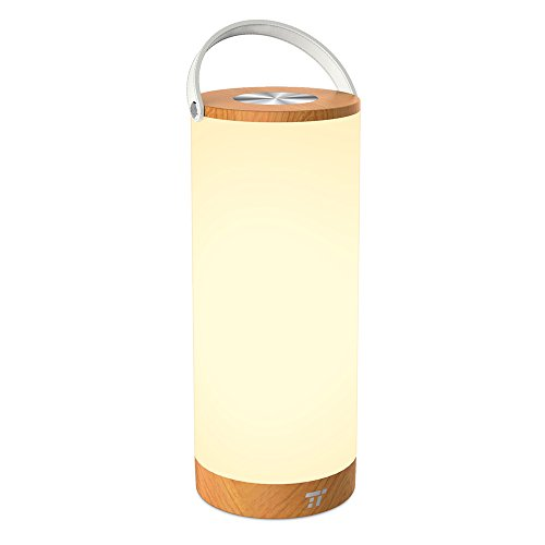 Outdoor Portable Lamp in US - 1
