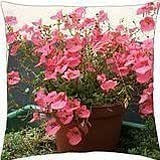 Pink plant - Throw Pillow Cover Case (18