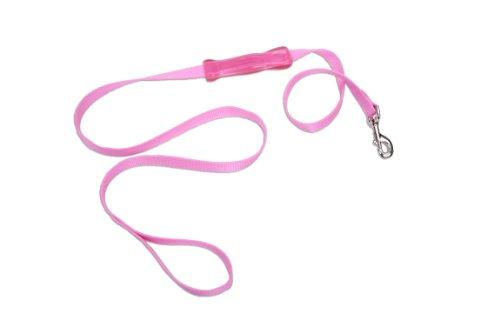 Coastal Pet 08904 PKB04 4-Feet by 1-Inch Insta-Grip Nylon Dog Leash, My Pet Supplies