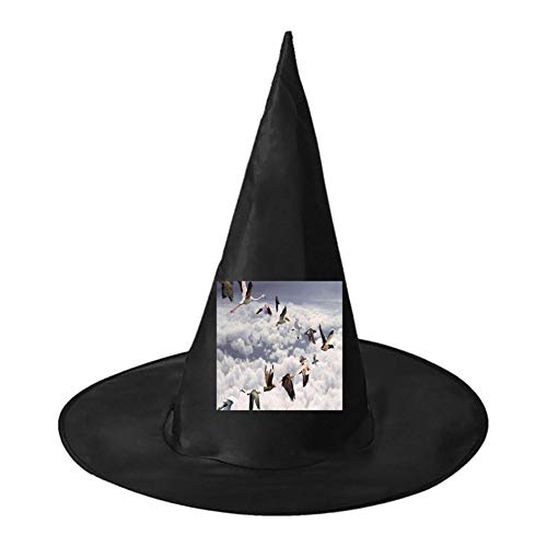 Birds Arranged in Human Shape Unisex Halloween Witch Role Playing Wizard Hat for Costume -