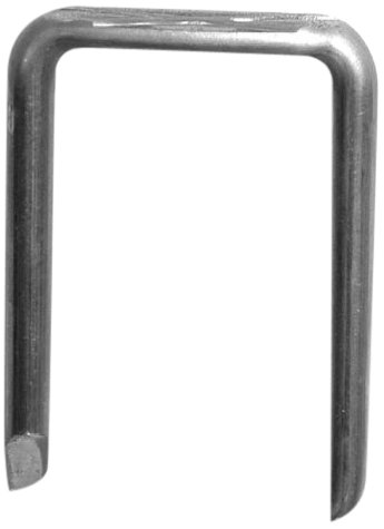 L.H. Dottie RX503P Staple 2 Nail, 1/2-Inch Width by 1-Inch Length, 10000-Pack by L.H. Dottie