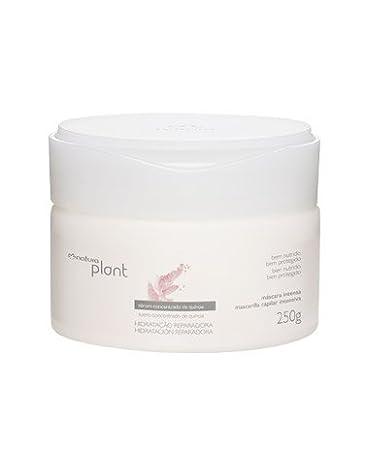 Linha Plant (Hidratacao Reparadora) Natura - Mascara Intensa Para Cabelos Secos 250 Gr -