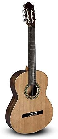 Paco Castillo 201 brilante – Guitarra clásica: Amazon.es: Instrumentos musicales