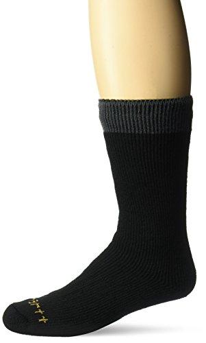 Carhartt Men's 2 Pack Arctic Thermal Crew Socks